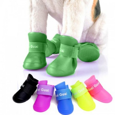 Candy Colors Dog boots